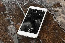 What to do if you drop your phone in water I dropped my phone and the screen is black but it still works problems